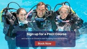 Sign up for a padi course