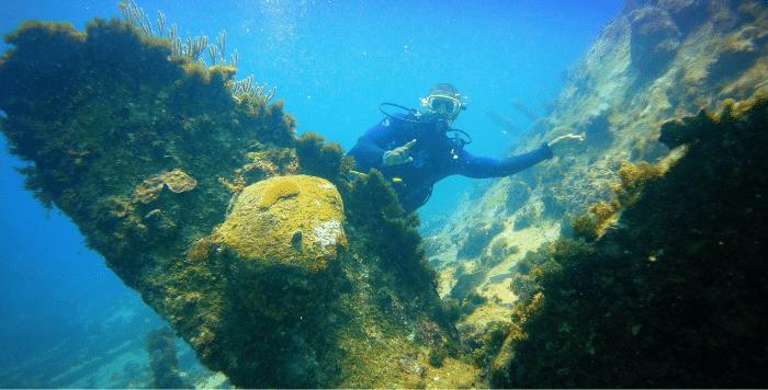 Monica Wreck, Punta Cana