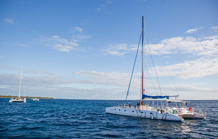 Catamaran sailing out on the ocean