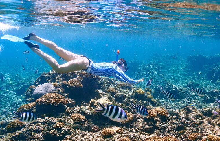 Snorkeller swimming over colourful reef