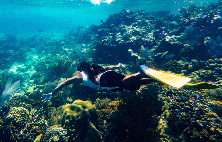 Person with flippers swimming over coral reef