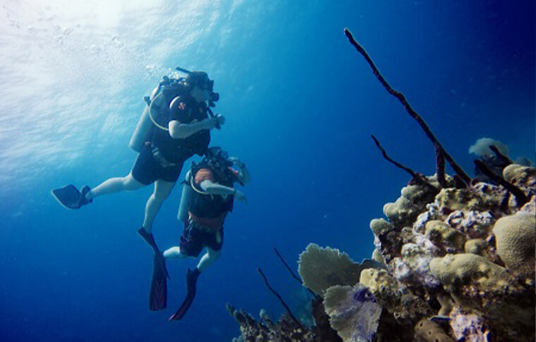 2 divers swimming over a coral reef