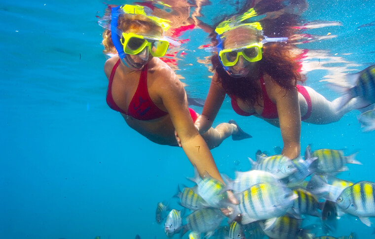 2 snorkelers admiring a shoal of striped tropical fish